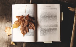 Picture Wallpaper, Mood, Book, Autumn, Text