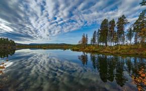 Picture autumn, the sky, trees, lake, reflection, Sweden, Sweden, Lapland, Lappland, Kvikkjokk