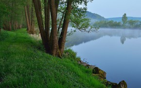 Picture grass, trees, landscape, nature, rocks, morning, River, mist