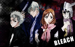 Picture background, texture, Bleach, Bleach, characters