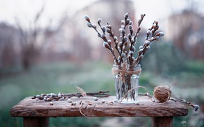 Picture Verba, bokeh, spring is coming