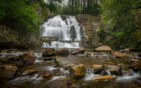Picture forest, river, stones, waterfall, PA, cascade, Pennsylvania, Hawk Falls, Waterfall Hawk, Hawk Run, State Park …