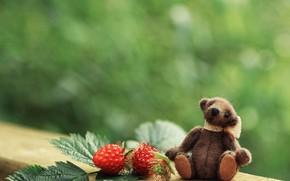 Picture summer, leaves, childhood, green, berries, raspberry, background, toy, two, bear, bear, bear, plush, Teddy, BlackBerry, …
