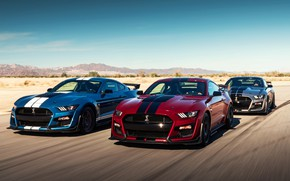 Picture speed, Mustang, Ford, Shelby, GT500, 2019