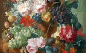 Picture flowers, eggs, socket, grapes, still life, painting, plum, walnut, strelsa