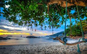 Picture sand, sea, beach, trees, swing, coast, bottle, Thailand, Phuket, Thailand, Phuket, Andaman Sea, The Andaman …