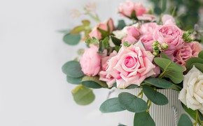 Picture flowers, box, roses, bouquet, pink, beautiful