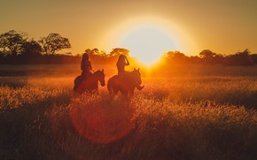 Picture NATURE, The SUN, GIRLS, HORSE, LIGHT, RAYS