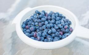 Picture berries, food, light background, blueberries, дуршлыг
