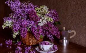 Picture style, bouquet, mug, Cup, basket, lilac, coffee pot, Elena Kutsenko