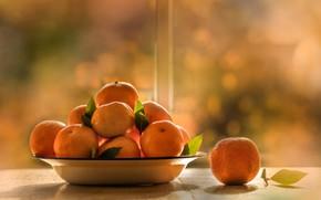 Picture light, table, food, fruit, bokeh, tangerines