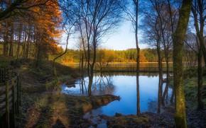 Picture landscape, nature, river, beauty, the bridge