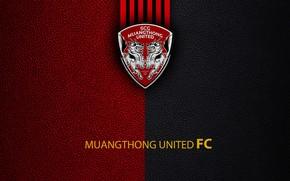 Picture wallpaper, sport, logo, football, Muangthong United