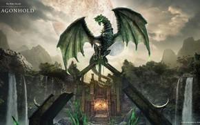 Picture Dragon, Dragon, The Elder Scrolls Online, tes online, THE ELDER SCROLLS ONLINE: DRAGONHOLD, Каалгронтиид
