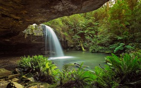 Picture rocks, thickets, waterfall, Australia, cave, fern, the grotto