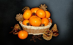 Picture nature, mood, basket, beauty, beautiful, beautiful, Rowan, beauty, harmony, the Wallpapers, cool, tangerines, bouquet, nice, …