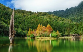 Picture autumn, forest, nature, lake, Taiwan, gazebo, Mingchi National Forest