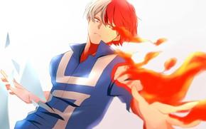 Picture fire, guy, fad, My Hero Academia, Boku No Hero Academy, Todoroki Shoto, My Hero Academy