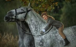 Picture autumn, mood, horses, rider, horse, girl, rider