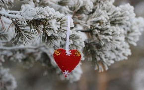 Picture needles, background, toy, heart, spruce