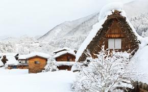 Picture winter, snow, trees, landscape, winter, house, house, landscape, nature, beautiful, winter, snow, cottage