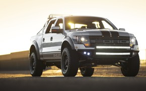 Picture Shelby, Pickup, 2013, American Car, Ford F-150, Low 700