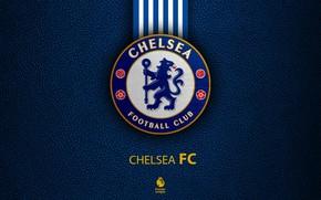 Picture wallpaper, sport, logo, football, Chelsea, English Premier League
