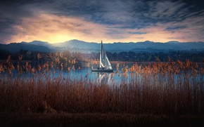 Picture lake, yacht, Switzerland, reed, Switzerland, Greifensee Lake, Lake Greifen, Greifensee