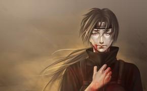 Picture sadness, anime, art, guy, Naruto, Naruto, Itachi Uchiha
