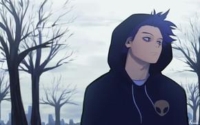Picture autumn, hood, guy, Boku no Hero Academy, My heroic academia, Shinsou Hitoshi