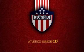 Picture wallpaper, sport, logo, football, Atletico Junior