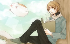 Picture cat, the demon, guy, Natsume Yuujinchou, U-Sensei