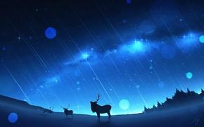 Picture winter, the milky way, deer, Starfall