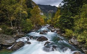 Picture landscape, nature, river, rages