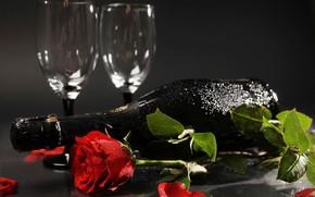 Picture flower, leaves, drops, background, mood, rose, bottle, petals, glasses, champagne, red, wet, lie, bokeh