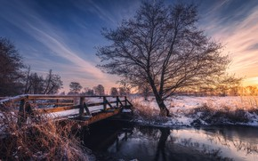 Picture winter, the sky, trees, sunset, bridge, nature, river, Tomczak Michael