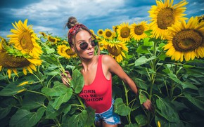 Picture field, girl, sunflowers, Mike, glasses, Vankoo Zlatew