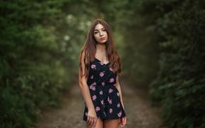 Picture forest, summer, girl, nature, shorts, brunette, track, jumpsuit