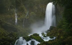 Picture forest, stones, moss, waterfalls, Columbia River Gorge, Washington State, The Columbia river gorge, Washington, Tribulation …
