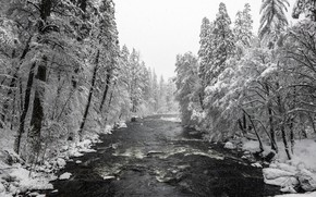 Picture United States, California, Yosemite National Park, Merced River, Mariposa