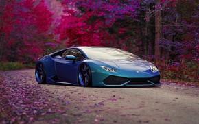 Wallpaper Auto, Lamborghini, Machine, Rendering, Sports car, Gran Turismo, Lamborghini Huracan, HURACAN, Gran Turismo Sport, Transport ...