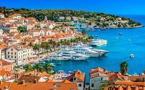 Picture sea, palm trees, yachts, panorama, Croatia, Hvar