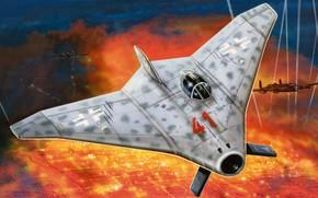 Picture Germany, prototype, fighter-interceptor, Luftwaffe, night fighter, Flying wing, Zdenek Machacek, Blohm & Voss Ae 607