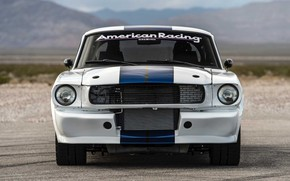 Picture Shelby, Classic, Muscle car, Vehicle, GT350CR