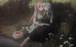Picture girls, meadow, cake, halo