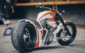 Picture Bike, Motorbike, Mystery, Thunderbike, Thunderbike customs