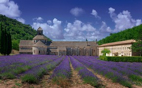 Picture field, the sky, the sun, clouds, trees, mountains, France, the monastery, lavender, Abbey, Senanque Abbey, ...