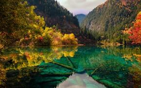 Picture autumn, landscape, mountains, nature, lake, China, forest, reserve, Jiuzhaigou, Jiuzaigou valley, Jiuzhaigou Valley