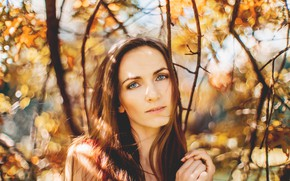 Picture autumn, look, girl, light, branches, nature, face, glare, portrait, brown hair, beautiful, blue-eyed, bokeh, long-haired