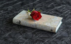 Picture flower, rose, book